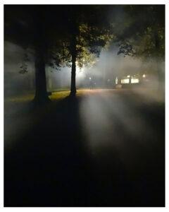 Dark night scene